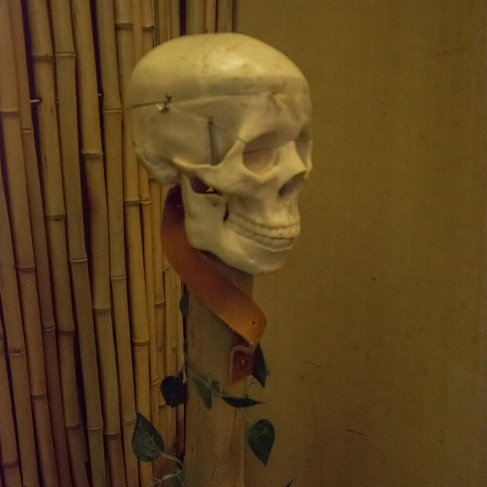A fake skull on the top of a pole