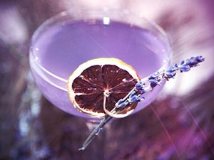 A purple cocktail in a glass with a dried orange and a stem of lavender on the side