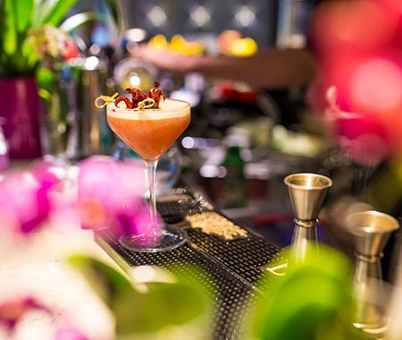 A glamorous looking cocktail on the bar