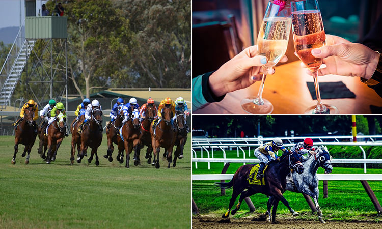 Three tiled images of some girls clinking champagne together and some horses racing