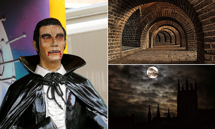 Three tiled images - one of Castle Hill under a moon, one of the tunnels under the castle and one of a waxwork of Count Dracula