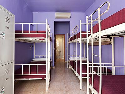 White bunkbeds with purple bedding, set against the walls of a purple hostel room