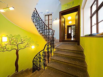A sweeping staircase with a tree mural on the green wall
