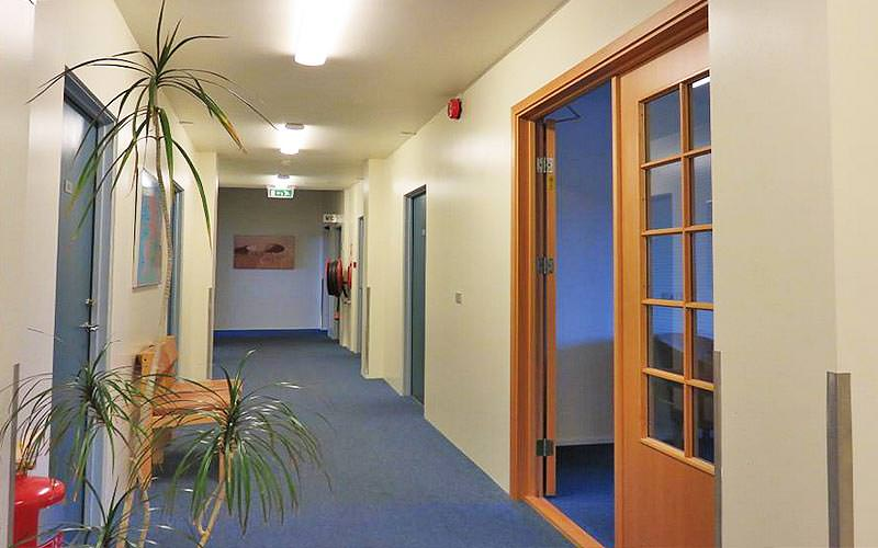 A simply furnished corridor and plant at the Guesthouse Borgartun