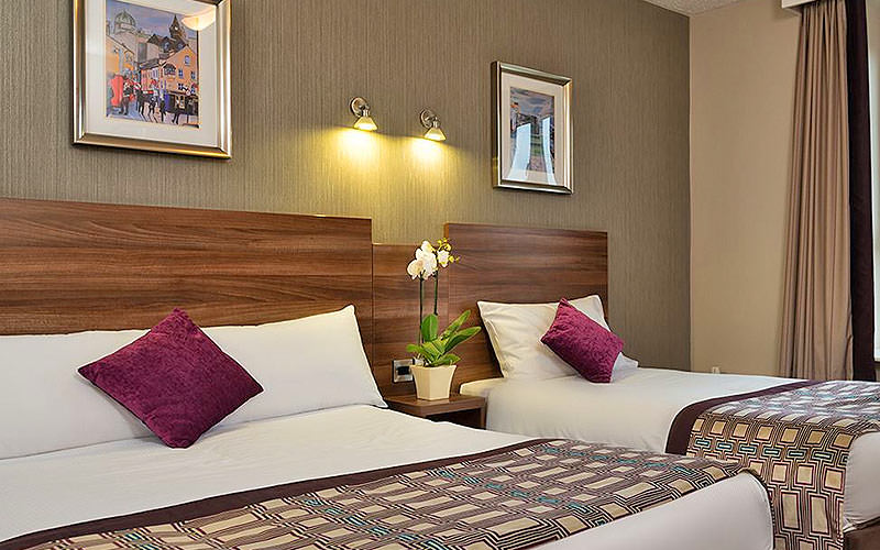 Two white double beds topped with purple cushions and throws, with a bedside table and plant in between