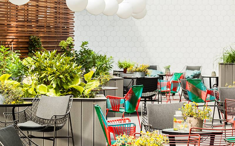 An outdoor seating area with quirky multicoloured seats and outdoor plants