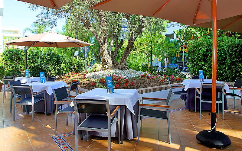 Outdoor tables and chairs under parasols, with trees in the background