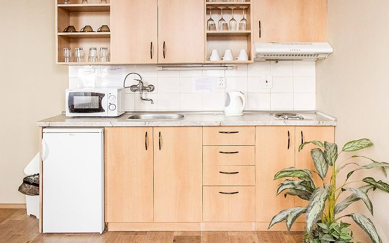 Wooden kitchenette with appliances on the counters, and a plant in the foreground