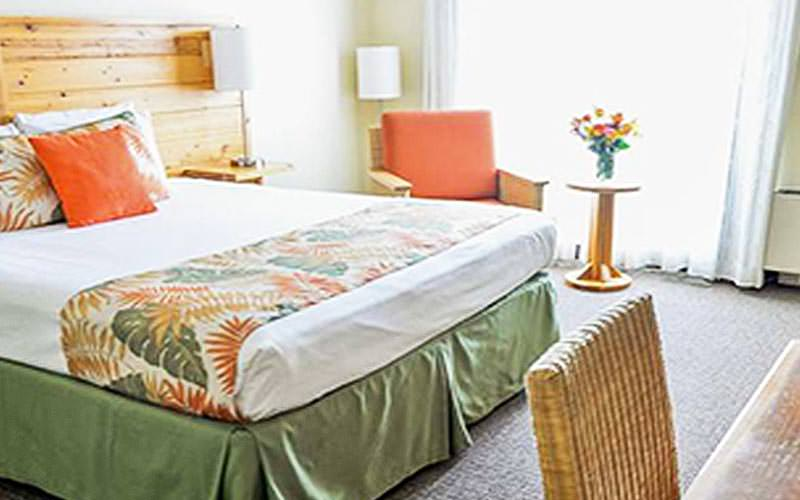 A tropical themed king guest room at Hooters Hotel