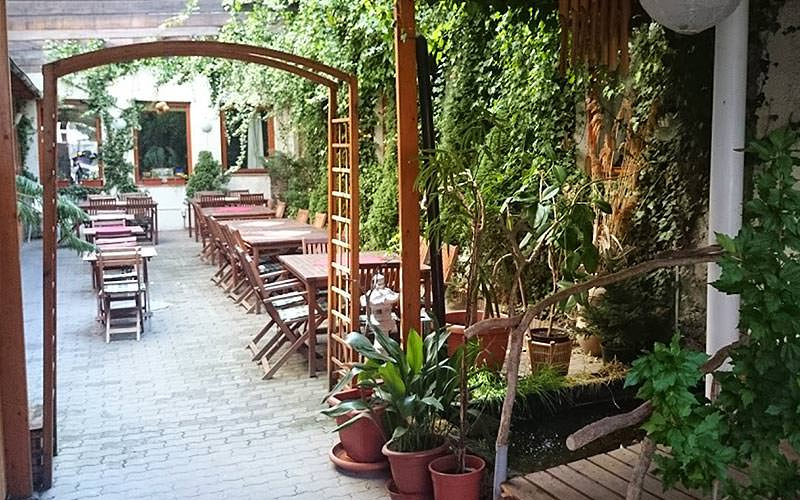 Tables and chairs outdoors, with a wooden arch and plants in the foreground
