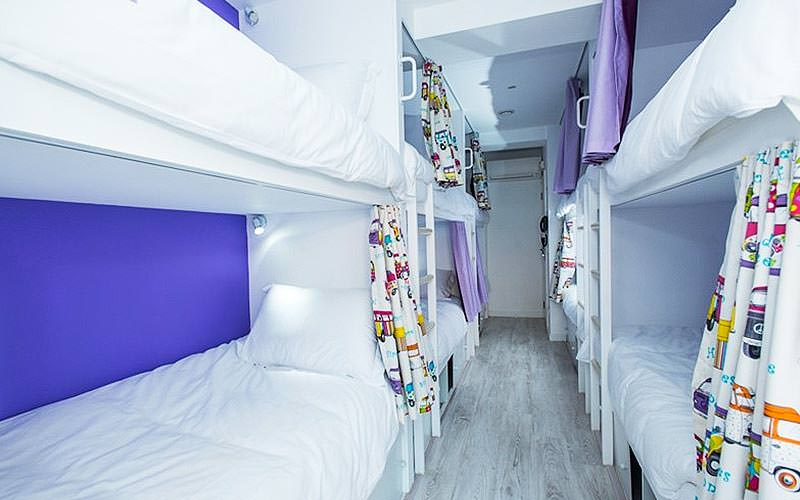 White bunk beds with patterned curtains, along the walls of a purple hostel room