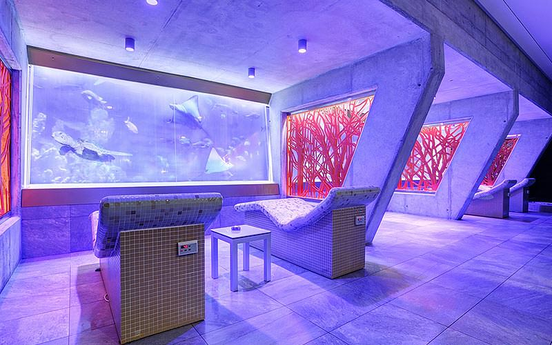 Two seats overlooking some fish swimming behind a glass wall