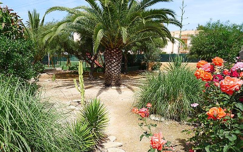 A garden area at Apartamentos Zodiac