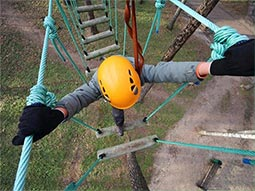An aerial view of someone climbing high ropes, wearing a yellow helmet
