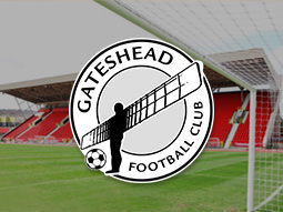 A view of Gateshead Stadium Football Club pitch with their logo over