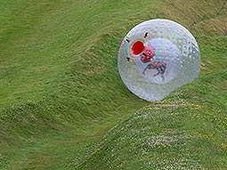 A person rolling down a hill in a zorb