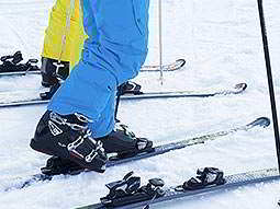 Two pairs of legs in ski pants and stood on skis in snow