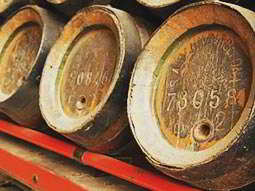 Some wooden kegs of beer lined up