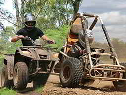 A split image of a quad bike and an off-road buggy being driven