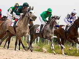 A group of horses and jockeys racing on a dirt track