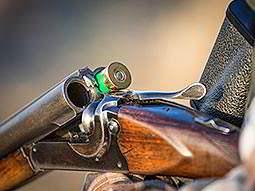 One cartridge in a shotgun barrel