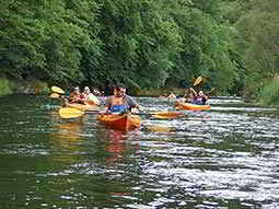 A group of kayaks being paddled down a calm river