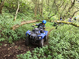 A black and white image of a person driving a quad bike