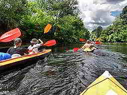People paddling down the river in canoes