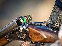 A double barrelled shotgun cracked open, containing one green shotgun shell