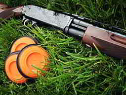 Close up of three orange clay discs and a shotgun set out on the grass