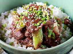 Close up of a bowl of rice and beef