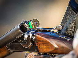 A double barreled shotgun cracked to reveal a single green shell