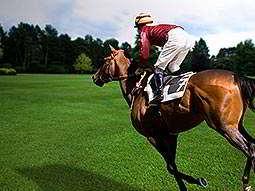 A horse and a jockey running across short green grass