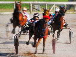 The front of a man harness racing on a track