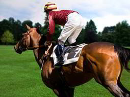 The back of a jockey stood up on top of a horse