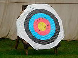 An archery target board with four arrows in