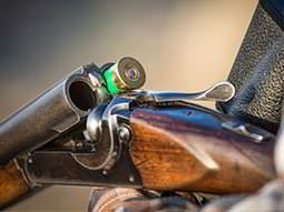 A double barrelled shotgun cracked open, containing one green shotgun shell