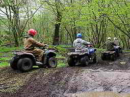 Four people on quad bikes driving through the woods
