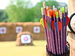 Some arrows with targets in the background