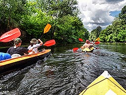 Two canoes full of people, sailing down a river with trees on either side