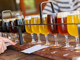 Glasses of different coloured beers, in a line