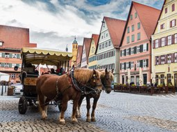A horse drawn carriage in Dusseldorf