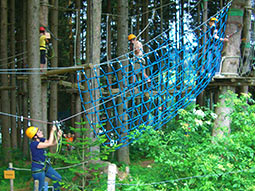A group of people climbing on high ropes in the trees