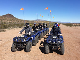Some people lined up in quad bikes in the desert