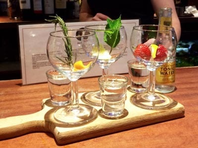 Image of a wooden board with shots of gin and gin glasses with fruit and a bottle of tonic beside the board