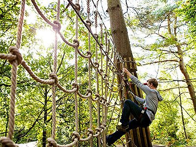 A man climbing a rope ladder in the forest