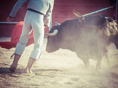 A matador in a white costume, in front of a charging bull