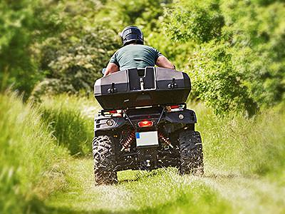 A quad bike driving into the woods