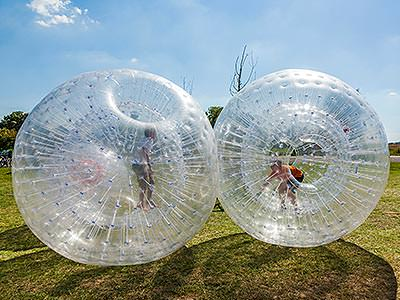 Two inflatable zorbs on grass
