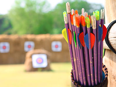 Bows in a quiver outdoors, with blurred archery targets in the distance